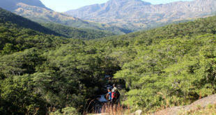 Chimanimani Nationalpark (Simbabwe)